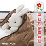 【名流精品寢具生活館】韓國製造恆溫.省電型.七段式微調電毯.雙人床鋪式