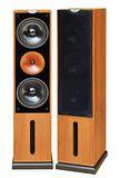 Audio King歌唱專業用喇叭  RA-928