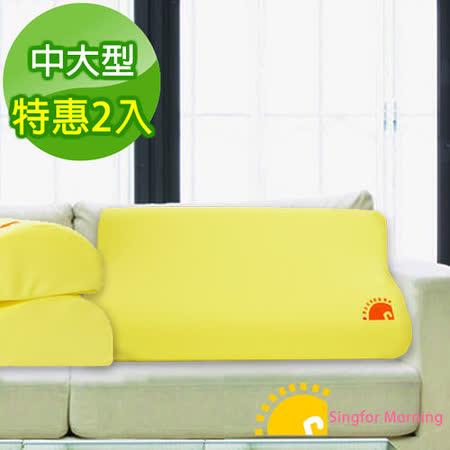 【幸福晨光】竹炭感溫釋壓記憶枕─中大型(2入)