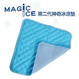 【Magic Ice】第二代。立體透氣網神奇冰涼墊(藍色)