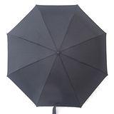 【好傘王】日系型男自動傘(黑色)