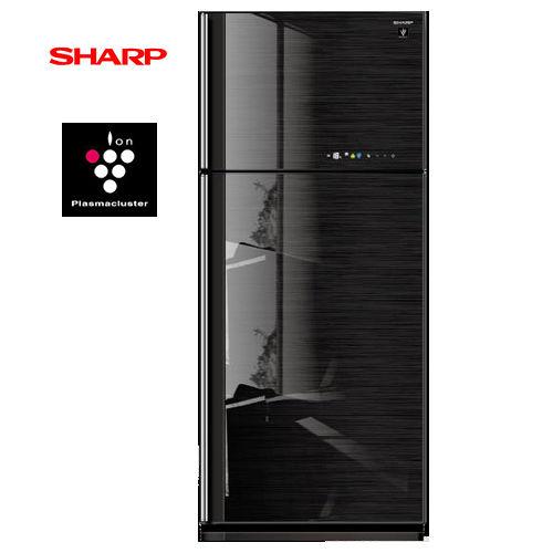 SHARP夏普583L自動除菌離子雙門冰箱SJ-GC58V