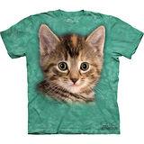 『摩達客』美國進口【The Mountain】自然純棉系列 泰勒小貓設計T恤 (預購)