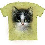 『摩達客』美國進口【The Mountain】自然純棉系列 綠眼小貓設計T恤 (預購)