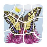 德國Beleduc貝樂多-多層木拼圖-蝴蝶(五合一多層木拼圖)