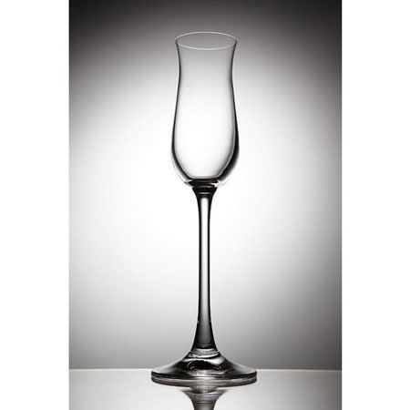 《Rona樂娜》Magnum特殊系列杯-Single malt 試酒杯-75ml(2入)