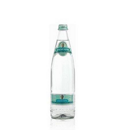 Galvanina義大利羅馬之源天然氣泡礦泉水雅緻系列(355ml/24瓶)