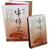 【高雄六龜鄉】和平牛樟芝(500mg/60粒裝)3盒特價!