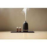【蕾莉歐】香氛精靈水氧機- 美禪型(黑)