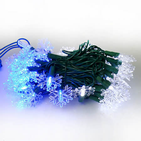 聖誕燈 LED燈50燈雪花造型燈(藍白光) (省電高亮度)(附IC控制器跳機)