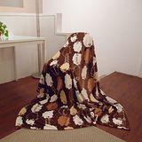 《SHINEE》特級法蘭絨毯(可愛風)