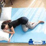 米夢家居~100%台灣製造HOT保暖發熱高磅數毛絨床墊 (雙人5尺) 孝親溫床必購