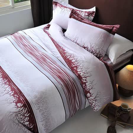 《SHINEE》雙人寬幅精梳棉四件式舖棉兩用被床包組(烏克蘭之夜)