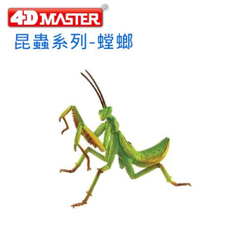 ~4D MASTER~昆蟲系列 ~ 螳螂 Mantodea