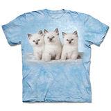 『摩達客』(預購)美國進口【The Mountain】自然純棉系列 雲朵小貓 設計T恤