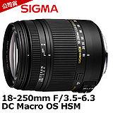 SIGMA 18-250mm F3.5-6.3 DC MACRO OS HSM (恆伸公司貨)