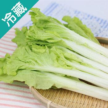 產銷履歷小白菜1包(250g/包)