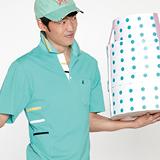 【KADA】海湖綠細格男款短袖POLO衫 36152