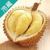 泰國金枕頭榴槤1粒(2.2kg±10%/粒)