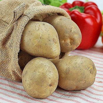 台中豐原馬鈴薯1袋(1kg±5%/袋)