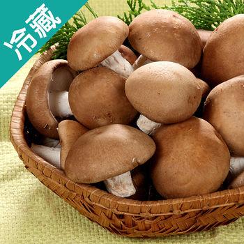 埔里特級鮮香菇1包(300G/包)