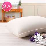 【濱川佐櫻-韻雅迷情】台灣製雙重彈力舒柔透氣枕-2入