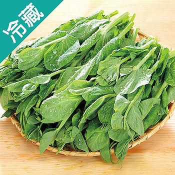 台灣大豆苗1包(150g±5%/包)
