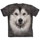 『摩達客』*大尺碼3XL*(預購)美國進口【The Mountain】自然純棉系列 哈士奇雪橇犬臉 設計T恤