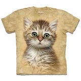 『摩達客』*大尺碼3XL*(預購)美國進口【The Mountain】自然純棉系列 棕虎斑小貓 設計T恤