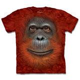 『摩達客』*大尺碼3XL*(預購)美國進口【The Mountain】自然純棉系列 紅毛猩猩臉 設計T恤