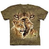 『摩達客』*大尺碼3XL*(預購)美國進口【The Mountain】自然純棉系列 尋十獅群 設計T恤