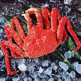 智利熟凍帝王蟹超大1.6公斤