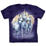 『摩達客』*大尺碼3XL*(預購)美國進口【The Mountain】自然純棉系列 尋十獨角獸 設計T恤