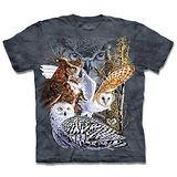 『摩達客』*大尺碼3XL*(預購)美國進口【The Mountain】自然純棉系列 尋十一貓頭鷹 設計T恤