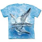 『摩達客』(預購)*大尺碼3XL*美國進口【The Mountain】自然純棉系列 尋十一鯨群 設計T恤