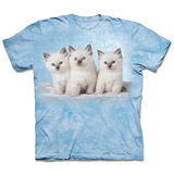 『摩達客』(預購)*大尺碼3XL*美國進口【The Mountain】自然純棉系列 雲朵小貓 設計T恤