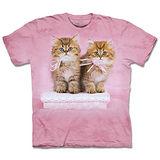 『摩達客』(預購)美國進口【The Mountain】自然純棉系列 緞帶小貓 設計T恤