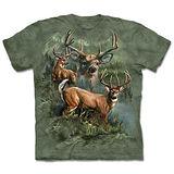 『摩達客』(預購)*大尺碼3XL*美國進口【The Mountain】自然純棉系列 野鹿拼貼 設計T恤