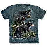 『摩達客』(預購)*大尺碼3XL*美國進口【The Mountain】自然純棉系列 三熊鼎立 設計T恤