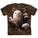 『摩達客』(預購)*大尺碼3XL*美國進口【The Mountain】自然純棉系列 鷹群瞳 設計T恤