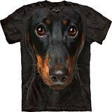 『摩達客』*大尺碼3XL*美國進口【The Mountain】自然純棉系列 長毛臘腸犬臉設計T恤 (預購)