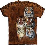 『摩達客』(預購)美國進口【The Mountain】自然純棉系列 虎群設計T恤