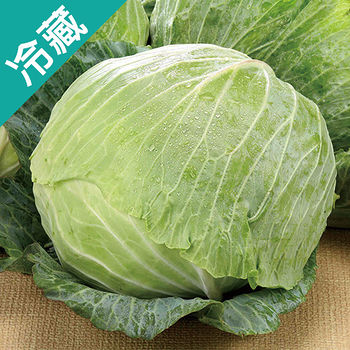 台灣高麗菜1粒(1kg±5%/粒)