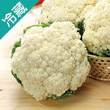 花椰菜1粒(500g±5%/粒)