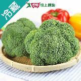 美國青花菜1粒(180g±5%/粒)