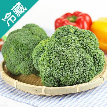 美國青花菜1粒(180g/粒)