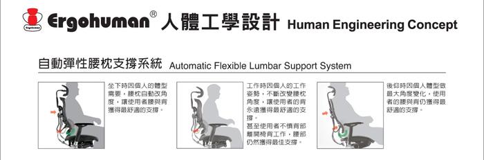 第一博士k8 ergohuman自動彈性腰枕支撐性系