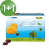 【家倍健NatureMax】陳德容代言專利山桑子葉黃素複方軟膠囊(30粒/盒)*3盒