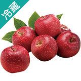 日本TOKI蘋果46/3粒