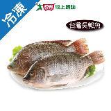 吳郭魚1尾(500~600g/尾)
